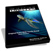 turtle ebook